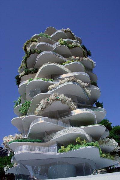 Creative Office Designs - Urban Cactus